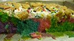 Rainwbow Poke Cake