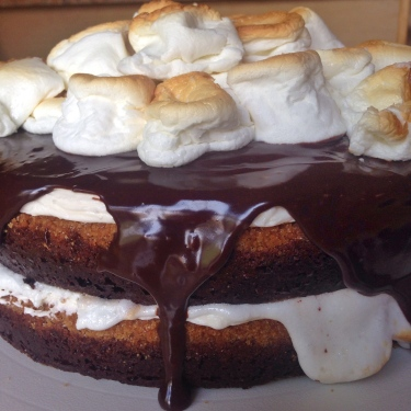 Toasted Marshmallow S'mores Cake - STARTED FROM THE BATTER